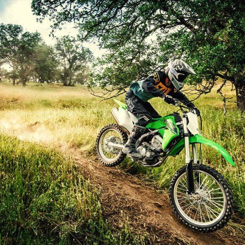 2020 Kawasaki KLX 300R Gallery Image 3