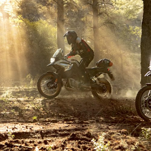 2020 BMW F 850 GS Gallery Image 8
