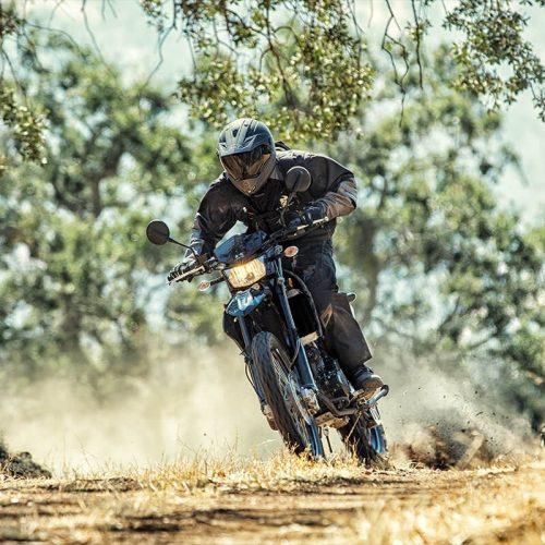 2020 Kawasaki KLX 250 CAMO Gallery Image 3