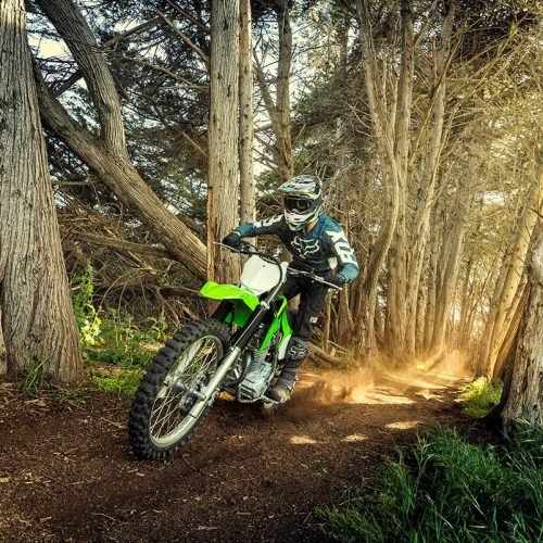 2020 Kawasaki KLX 230R Gallery Image 2
