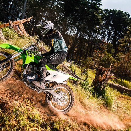 2021 Kawasaki KLX 300R Gallery Image 1