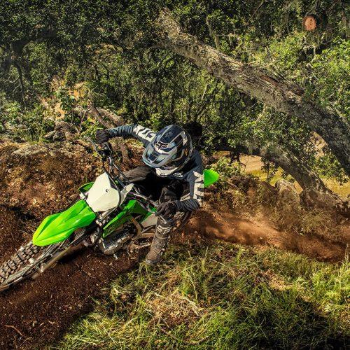 2020 Kawasaki KLX 230R Gallery Image 1