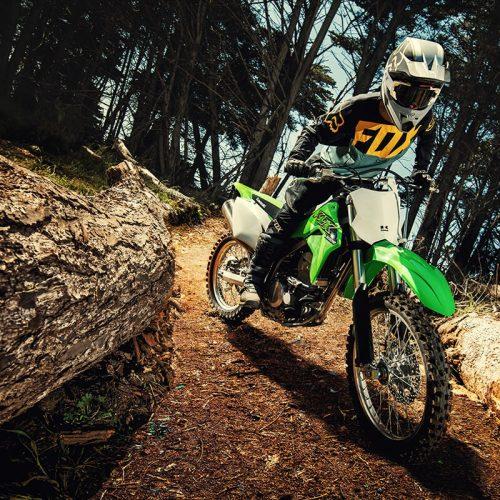 2020 Kawasaki KLX 300R Gallery Image 6