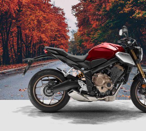 2019 Honda CB650R Gallery Image 4
