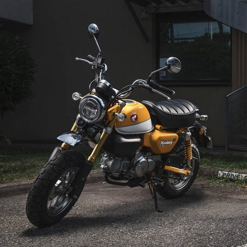 2019 Honda Monkey ABS Gallery Image 3