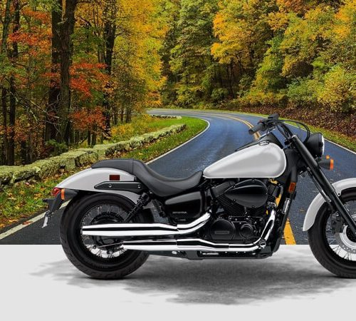 2019  Honda Shadow Phantom Gallery Image 1