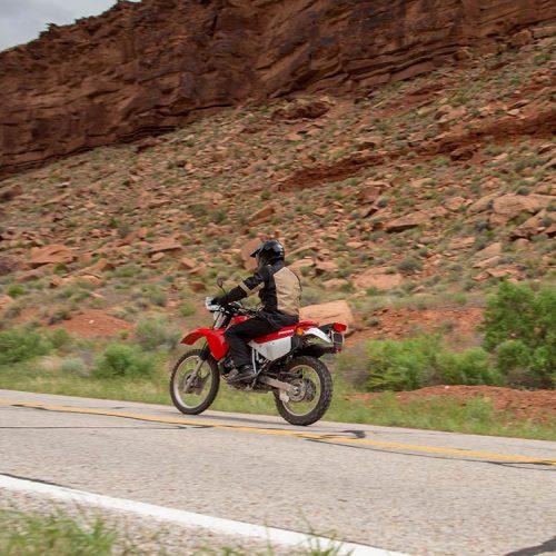 2019 Honda XR650L Gallery Image 3