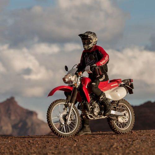 2020 Honda XR650L Gallery Image 1