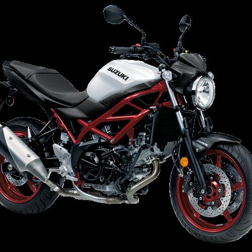 2021 Suzuki SV650 ABS Gallery Image 2