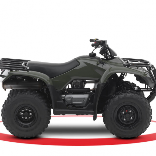2019 Honda Fourtrax Recon Gallery Image 1