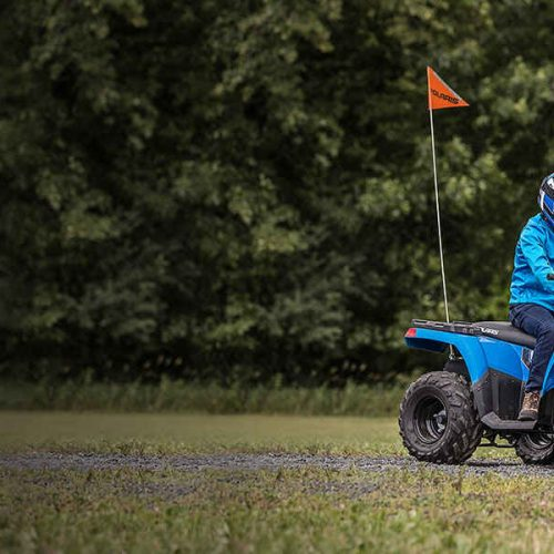 2020 Polaris Sportsman® 110 EFI Gallery Image 3