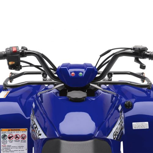 2020 Yamaha GRIZZLY 90 Gallery Image 3