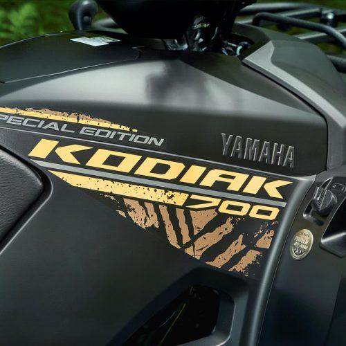 2020 Yamaha KODIAK 700 EPS SE Gallery Image 4
