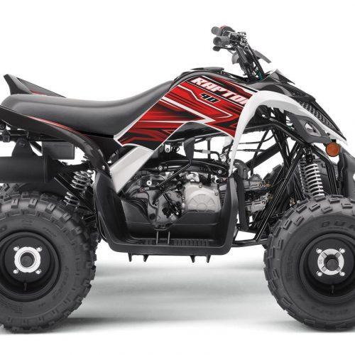 2020 Yamaha RAPTOR 90 Gallery Image 1