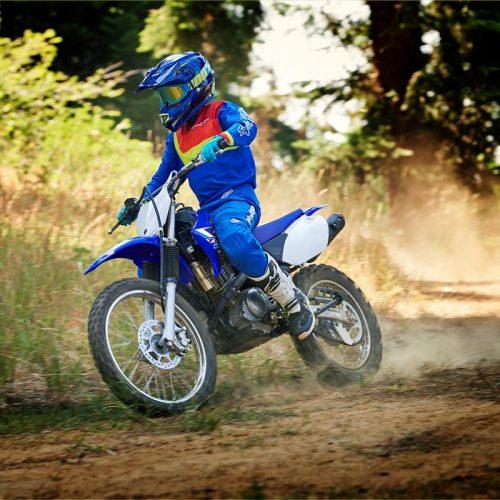 2020 Yamaha TT-R125LE Gallery Image 1