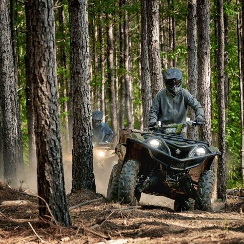 2020 Yamaha GRIZZLY EPS Gallery Image 1