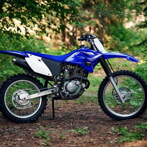 2020 Yamaha TT-R230 Gallery Image 3