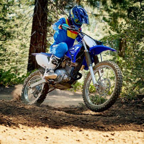 2020 Yamaha TT-R125LE Gallery Image 3
