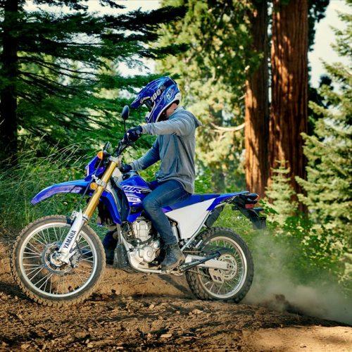 2020 Yamaha WR250R Gallery Image 4