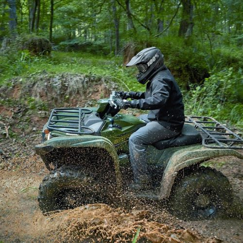 2020 Yamaha GRIZZLY EPS Gallery Image 3