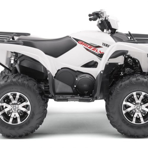 2020 Yamaha GRIZZLY EPS Gallery Image 4