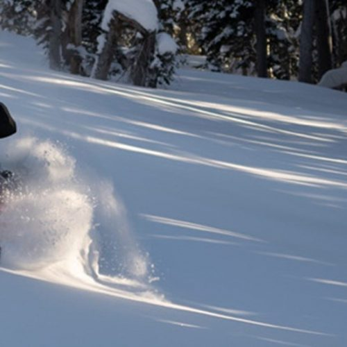 2021 Timbersled RIOT S Gallery Image 2