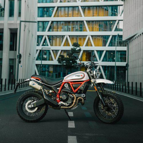 2020 Ducati Scrambler Desert Sled Gallery Image 3