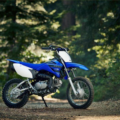 2021 Yamaha TT-R110E Gallery Image 2