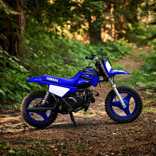 2021 Yamaha PW50 Gallery Image 4