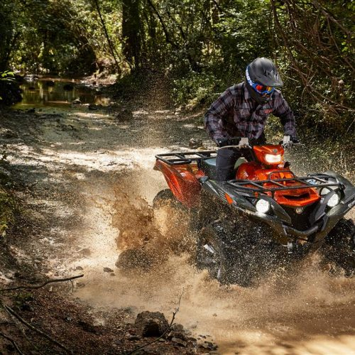 2021 Yamaha GRIZZLY EPS SE Gallery Image 2