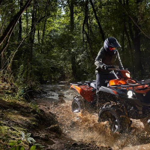 2021 Yamaha GRIZZLY EPS SE Gallery Image 3