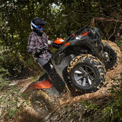 2021 Yamaha GRIZZLY EPS SE Gallery Image 4