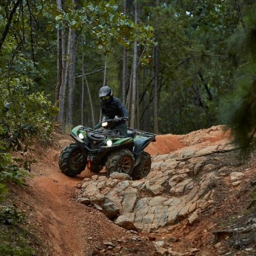 2021 Yamaha GRIZZLY EPS XT-R Gallery Image 4