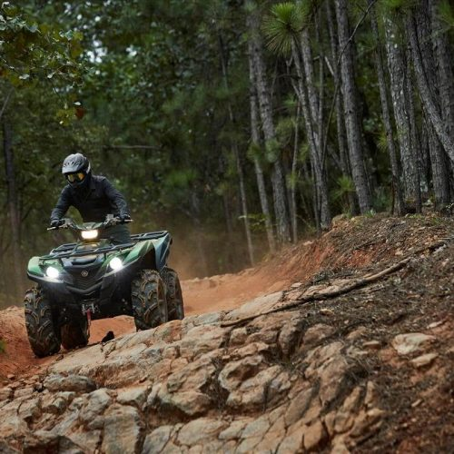 2021 Yamaha GRIZZLY EPS XT-R Gallery Image 1