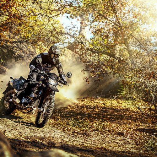 2021 Kawasaki KLX 300 Gallery Image 2