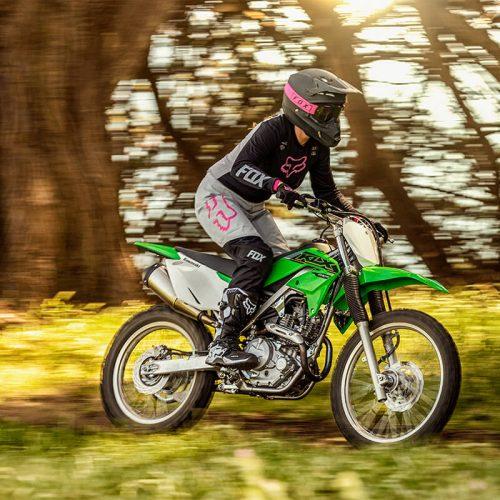 2021 Kawasaki KLX 230R S Gallery Image 2