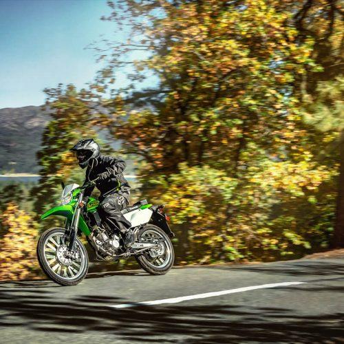 2021 Kawasaki KLX 300 Gallery Image 4