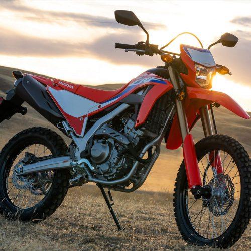 2021 Honda CRF300L Gallery Image 3