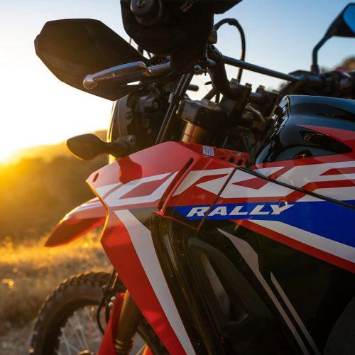 2021 Honda CRF300L RALLY Gallery Image 3