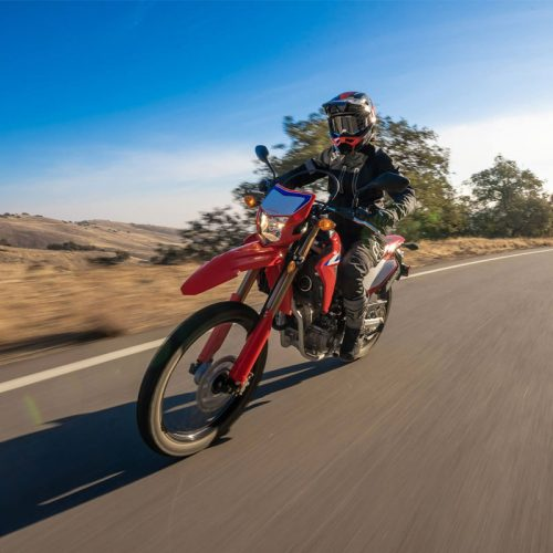 2021 Honda CRF300L Gallery Image 1