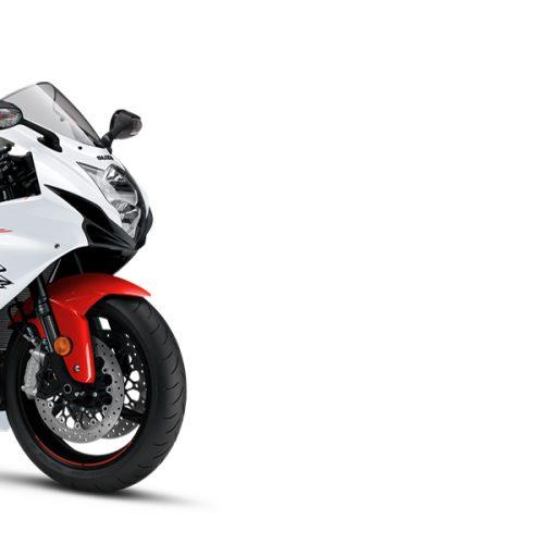 2021 Suzuki GSX250R ABS Gallery Image 3